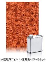 水圧転写フィルム 木目調 WD01 &定着剤セット